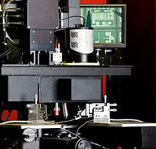 Thermal Emission Microscope
